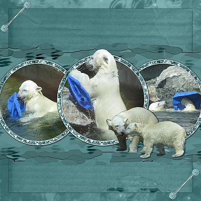 bluedream-eisbar-kleiner